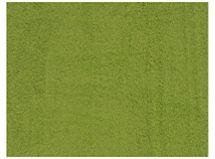 Alfombra Shaggy Tampa 200x300 Verde Cannon $64.990